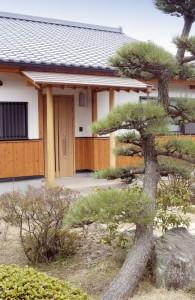 momiya-furuichi_1